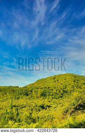 Landscape Of The Good Trip Mountain Range