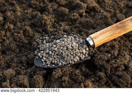 Chemical Fertilizer Close-up. Npk Fertilizer For Plants, Gardening Concept.