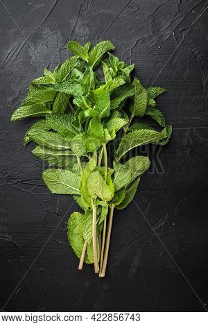 A Bunch Of Mint, Spearmint Or Peppermint Set, On Black Stone Background, Top View Flat Lay