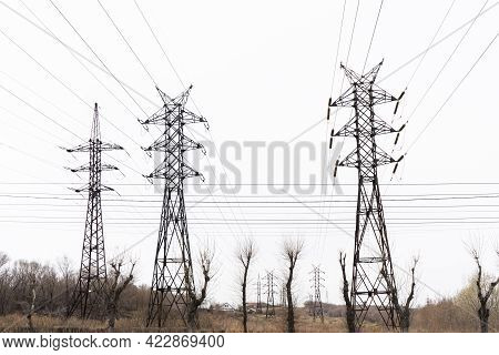 Electric City Pole With Gray Sky And Bare Tree Branches. High Voltage Pole.