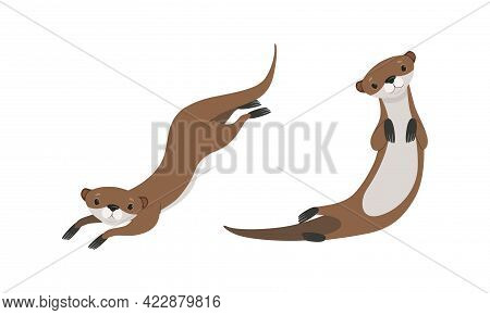 Set Of Cute Weasel In Various Poses, Adorable Funny Wild Animal Cartoon Vector Illustration