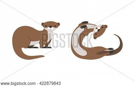 Set Of Cute Weasel, Adorable Funny Otter Animal Cartoon Vector Illustration