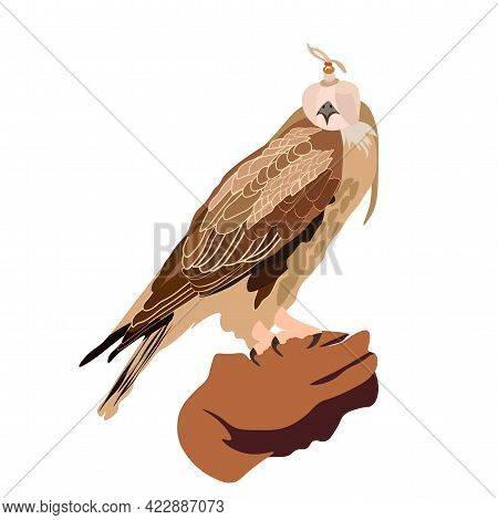Vector Stock Falconry Illustration. A Hawk Sits On The Glove. Traditional Hunting In The East. In Ku