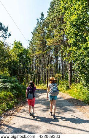 Two Friends Walking Along The Urdaibai Path, A Bizkaia Biosphere Reserve Next To Mundaka. Basque Cou
