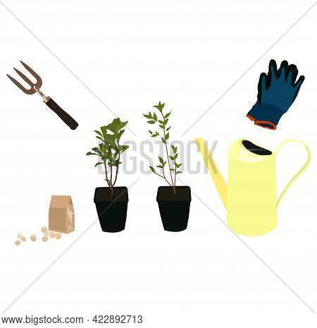 Vector Stock Illustration Of A Gardening Set. Watering Can, Garden Tools, Rakes, Gloves, Pots With S