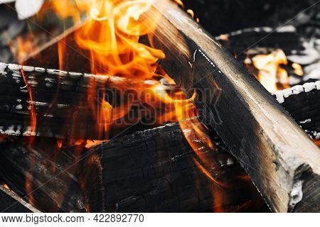 Bonfire In The Forest. Closeup Of Blazing Campfire, Campfire Burning Logs In Large Orange And Yellow