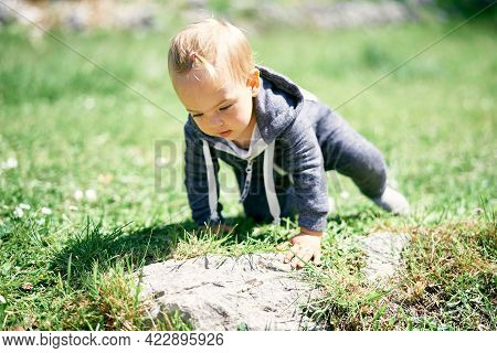 Little Girl In Overalls With A Ponytail Crawls On A Green Lawn