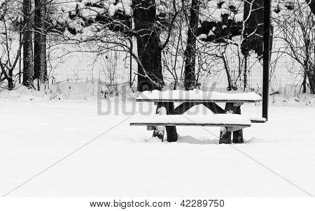 Silent Shroud of Snow