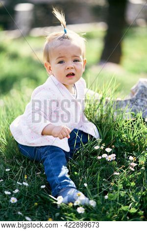 Pensive Little Girl With A Ponytail On Her Head Sits On A Green Lawn Among White Daisies