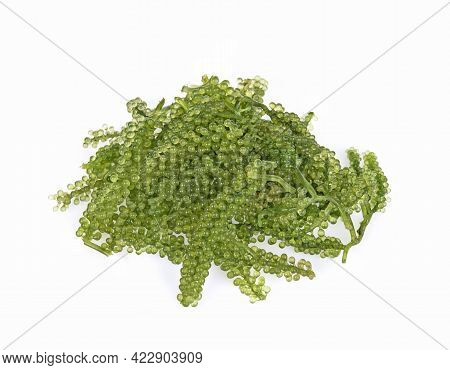 A Sea Grape Isolated On White Background