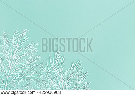 Pastel Colored Background With White Coral On Turquoise Colored Paper With Copy Space. Summer, Marin