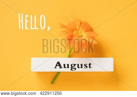 Hello August Text, Greeting Card. One Orange Calendula Flower And Calendar Summer Month August On Ye