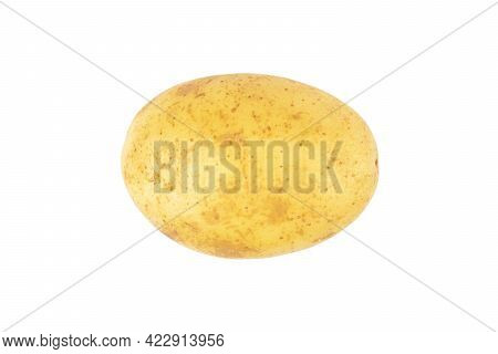 Isolated Potato. Whole Raw Potato Isolated On White Background With Clipping Path. Fresh Potato Isol