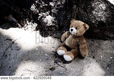 Black And White Of Alone Toy Teddy Bear Doll Sitting On Sand Beach With Tree Base. Lonely, Sad, Brok