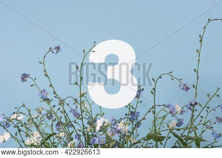 Number Three Among Blue Flowers On Blue Background. Birthday, Anniversary, Jubilee Concept. For Invi