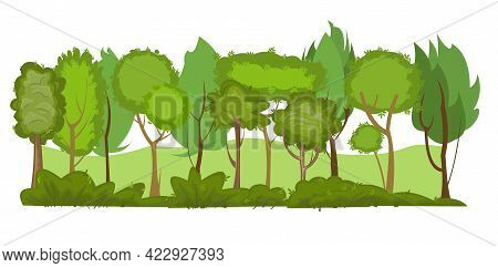 Summer Forest Landscape. Light Foggy Thickets. Dense Foliage. View Of Green Trees. Cartoon Flat Styl