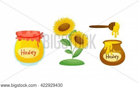 Honey Jar And Sunflower Plant With Fragrant Blossom Vector Set