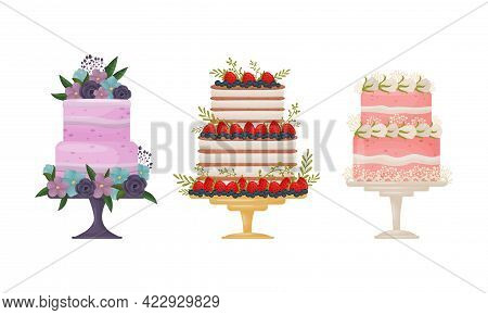 Creamy Tier Cake Decorated With Flowers And Berries Standing On Pedestal Cake Plate Vector Set