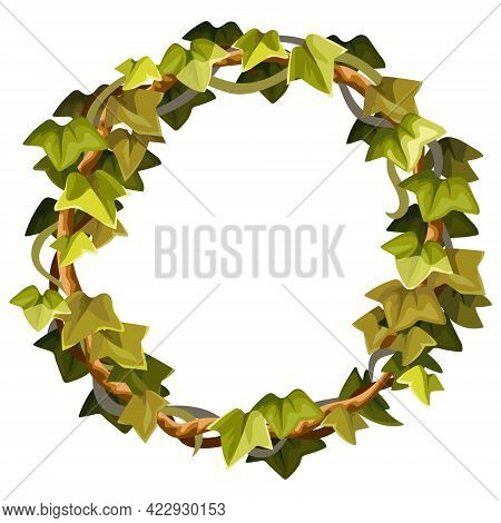 Ivy Frame. Wreath Liana Branches And Tropical Leaves. Game Cartoon Element Of Creeper Jungle. Isolat