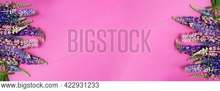 Summer Background Floral Banner With Lupins. Bouquet On Pink Background. Pink And Purple Lupine Flow