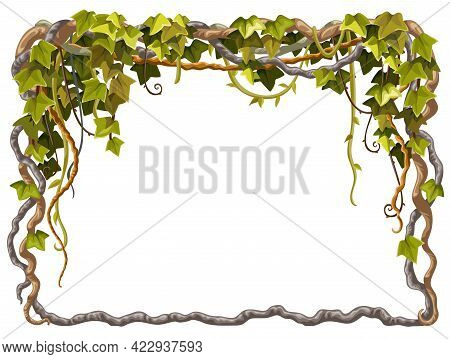 Ivy Frame. Liana Branches And Tropical Leaves. Game Cartoon Poster Of Creeper Jungle. Isolated Vecto