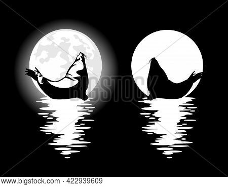Steller Sea Lion And Full Moon - Night Aquatic Wildlife Black And White Vector Design Set With Myste