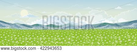 Spring Landscape Of Daisy Farm Field And Mountain With Fluffy Cloud, Sun And Blue Sky. Wide Panorama