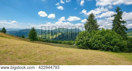 Hay Field In Mountains. Wonderful Rural Landscape. Sunny Summer Day. Clouds On The Sky