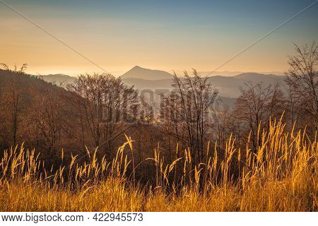 Rural Landscape With Hills And Forests In Autumn Colors At Sunset.