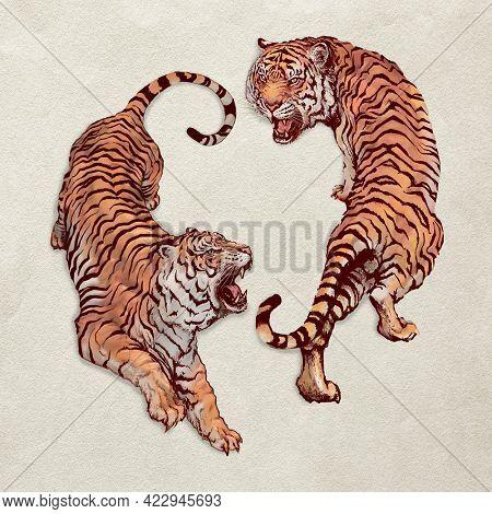 Hand drawn roaring yin yang tigers illustration