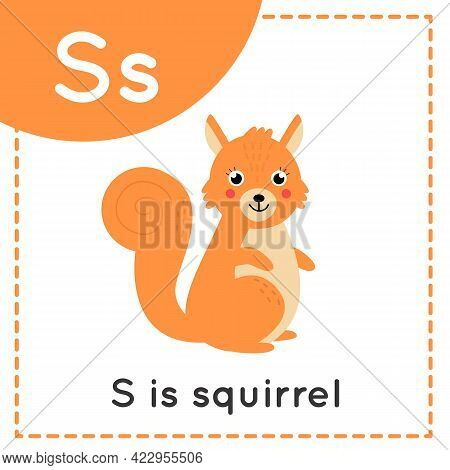 Animal Alphabet Flashcard For Children. Learning Letter S. S Is For Squirrel.