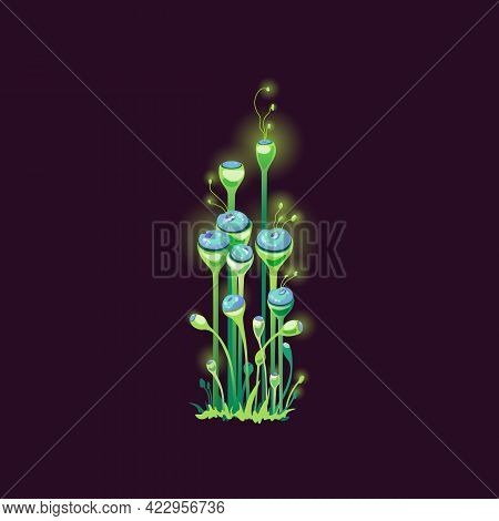 Magic Fantasy Fabolous Mushrooms, Colorful Unusual Plants Of Alien Nature.