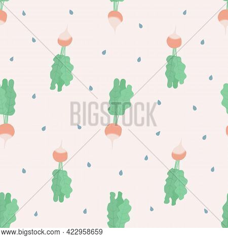 Vector Seamless Pattern With Radish And Raindrops On White Background. For Spring, Summer Decoration