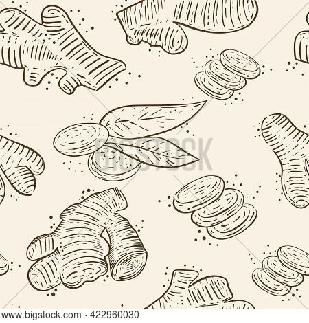 Ginger Seamless Pattern, Vector. Ginger Root Whole And Piece, A Repeating Kitchen Background. Hand D