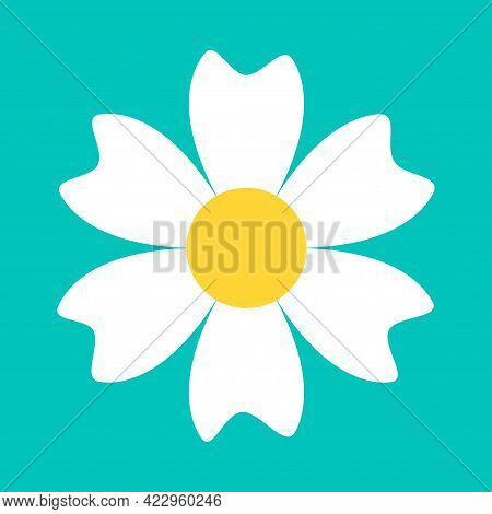 Chamomile Daisy Round Icon. White Flower. Camomile Petal. Cute Plant Collection. Growing Concept. Lo