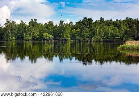 Green Trees Near The Lake On A Sunny Day With Clouds On The Blue Sky