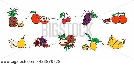 Continuous Line Fruits. Exotic Colored Coconut Pineapple Pear Grape Orange And Bananas. Vector Sweet