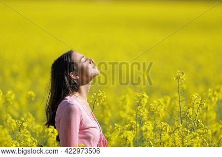Profile Of A Woman Silhouette Screaming In The Top Of A Cliff In The Mountain With A Beautiful Lands
