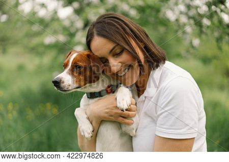 Woman Play Jack Russell Terrier Dog In Meadow. Woman Hugging Jack Russell Terrier Dog In Nature. Bea