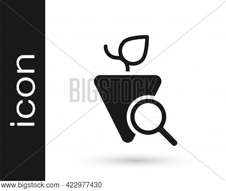Black Grapes Icon Isolated On White Background. Selection Of Grapes. Vector
