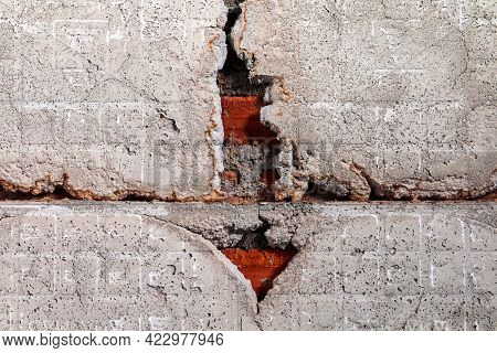 Termite Nest, Termite Nest In The Cracks Cement Wall
