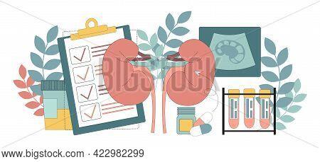 Nephrology. Urology. Kidney Disease. Urine Analysis And Kidney Ultrasound. Vector Illustration Isola
