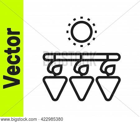 Black Line Drying Grapes Icon Isolated On White Background. Dried Grapes. Vector