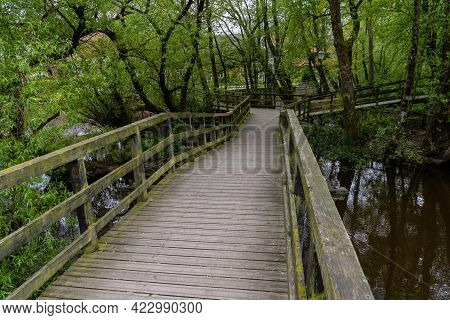 Wooden Boardwalk Leading Over The Canals And Through The Forest In The City Park Of Ribe