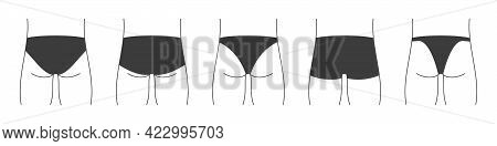 Different Types Of Men's Underpants Or Swimming Trunks. Collection Of Lingerie Back View. Vector Ill