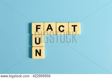 Square Letters With Text Fun And Fact Isolated On Blue Background.