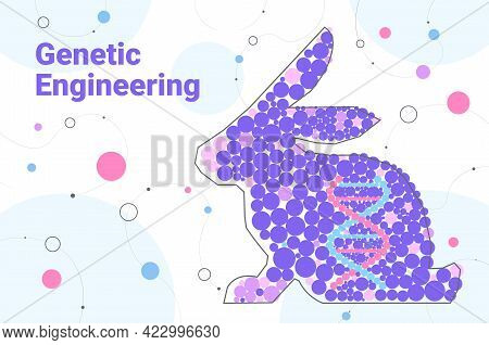 Dna Of Rabbit Genetically Modified Animals Genetic Engineering Biological Research Concept Horizonta