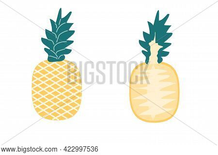 A Whole Pineapple And A Slice Of Pineapple On An Isolated White Background. Flat Vector Illustration