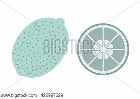 A Whole Lime And A Slice Of Lime On An Isolated White Background. Flat Vector Illustration. The Frui