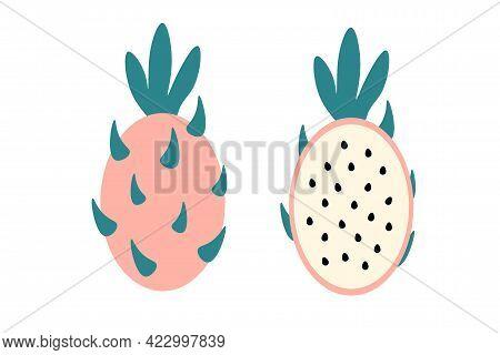 Whole Pitahaya Piece Of Pattaya On Isolated White Background. Flat Vector Illustration. Exotic Fruit